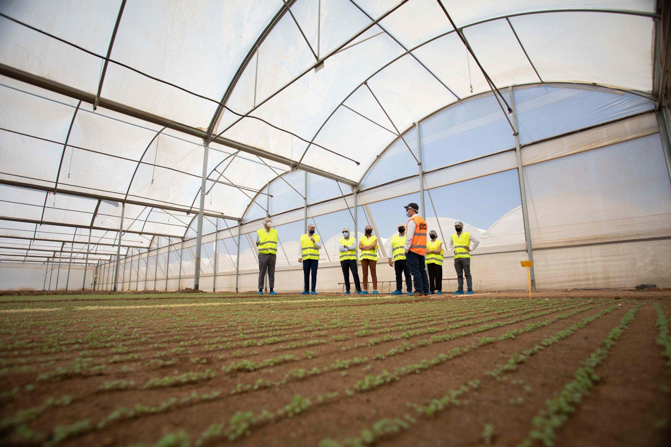 La Unidad de I+D+i de Florette, ejemplo de innovacion de la industria agroalimentaria en Navarra 1 (1)