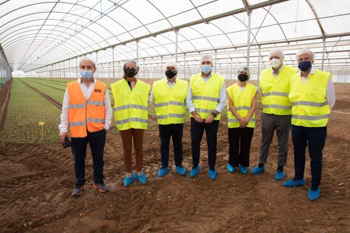 La Unidad de I+D+i de Florette, ejemplo de innovacion de la industria agroalimentaria en Navarra (1)